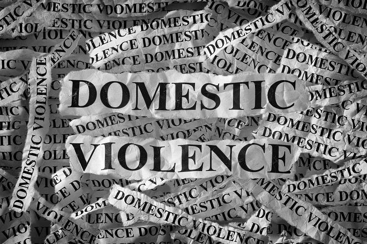 term paper domestic violence